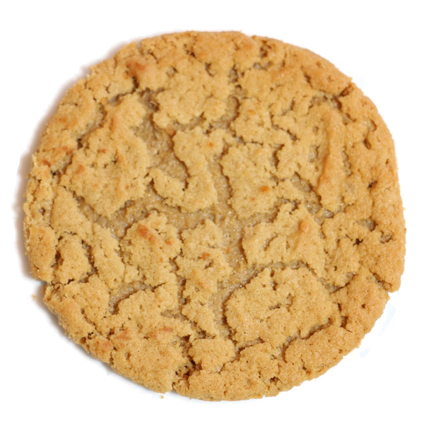 homemade peanut butter cookie